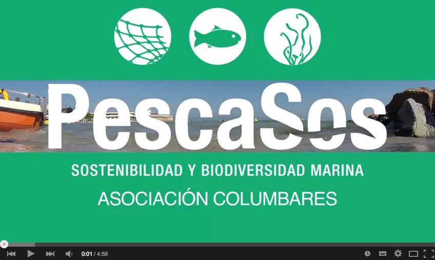 Vídeos divulgativos proyecto PescaSos